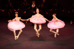 芭蕾舞女演员共同安排gennady ledyakh学校 库存图片