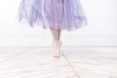 年轻芭蕾舞女演员的特写镜头腿 库存图片