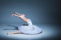 芭蕾舞女演员的画象芭蕾tatu的在蓝色 库存图片