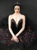 芭蕾舞女演员美丽的纵向 免版税库存照片