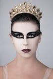 芭蕾舞女演员黑天鹅 库存图片