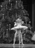 芭蕾舞步de deux-The Ballet胡桃钳 免版税图库摄影