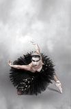 芭蕾黑色舞蹈演员天鹅 库存图片