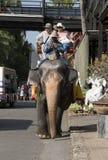 芭达亚泰国星期天December 13, 2015,在大象的旅游夫妇在Suan Nong Nuch乘坐 库存图片