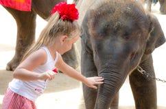 芭达亚,泰国:小女孩和小的大象。 免版税库存图片