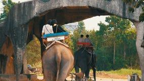 芭达亚,泰国- 2017年12月26日:大象在大象村庄 游人乘坐的大象 股票视频