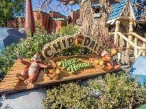 芯片和戴尔的树上小屋迪斯尼乐园的Toontown部分的停放 免版税图库摄影