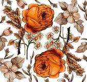 花。玫瑰。Camomiles。美好的背景。 免版税图库摄影