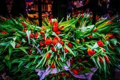 花五颜六色的品种在花市场上的在哥本哈根 图库摄影