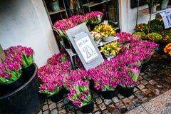 花五颜六色的品种在花市场上的在哥本哈根 免版税库存图片