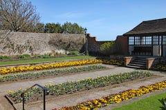 花五颜六色的显示在康诺特庭院的在西德茅斯,德文郡 库存图片