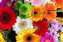 花五颜六色的花束  图库摄影