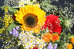 花俏丽的花束,农夫市场 免版税图库摄影