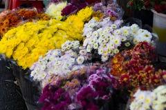 花出售在花市场上 免版税库存照片