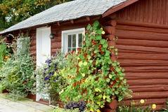 花包括原木小屋 库存照片
