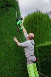 花匠割灌木 库存图片