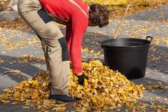 花匠在秋季时间 库存图片