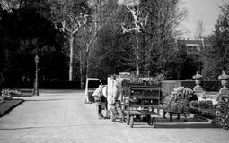 花匠工作者在electriv搬运车附近的公园有拖车的 免版税库存图片