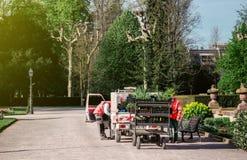 花匠工作者在electriv搬运车附近的公园有拖车的 免版税库存照片