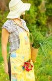 花匠愉快的妇女工作 免版税库存照片