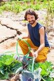 花匠浇灌的圆白菜 免版税图库摄影
