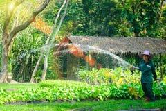 花匠浇灌的菜在一个小园艺中心 免版税图库摄影