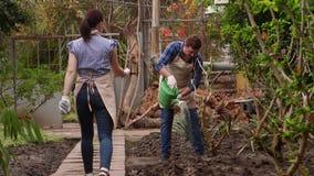 花匠自温室,人在道路工作是水厂,妇女走 股票视频