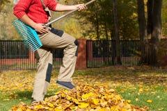 花匠获得乐趣在秋季时间 库存图片