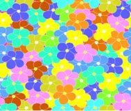 花卉与多彩多姿的雏菊的传染媒介无缝的样式开花 免版税库存图片