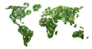 花卉世界 免版税图库摄影