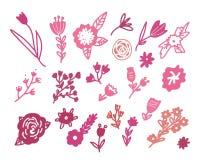 花卉乱画手拉的集合 库存照片