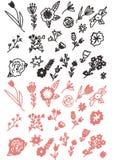 花卉乱画手拉的集合 库存图片