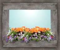 花卉五颜六色的构成 库存图片