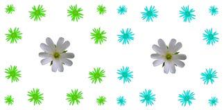 花卉五颜六色的样式背景集合 图库摄影