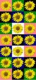 花卉五颜六色的样式背景 免版税图库摄影