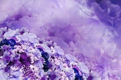 花卉五颜六色的美好的背景 青紫罗兰色白的花花构成花束  免版税库存照片