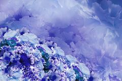 花卉五颜六色的美好的背景 青绿松石紫罗兰色白的花花构成花束  库存图片