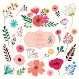 花卉元素收藏 免版税图库摄影