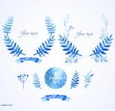 花卉元素美好的蓝色圆的框架  库存照片