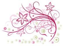 花卉元素 免版税库存图片