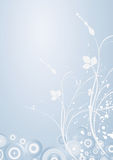 花卉冬天 库存图片