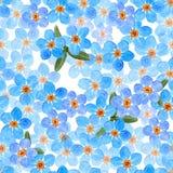 花卉勿忘草花无缝的样式,水彩例证 库存照片