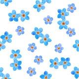 花卉勿忘草花seamlrss样式,水彩例证 免版税库存照片