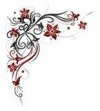 花卉卷须,花,红色 库存照片