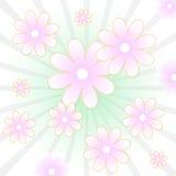 花卉向量背景 免版税库存照片