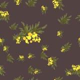 花卉含羞草减速火箭的葡萄酒背景 向量例证