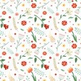 花卉和植物传染媒介无缝的样式 包装纸设计 免版税库存照片