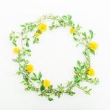 花卉圆的框架由与叶子和黄色花的分支做成在白色背景 平的位置,顶视图 背景细部图花卉向量 免版税图库摄影