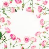 花卉圆的框架由桃红色玫瑰、芽和叶子制成在白色背景 红色上升了 平的位置,顶视图 库存图片