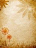 花卉在模式墙壁 图库摄影